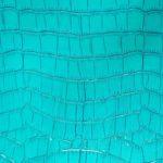 Coco Charol Azul turquesa