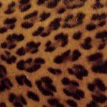 Leopardo Marrón
